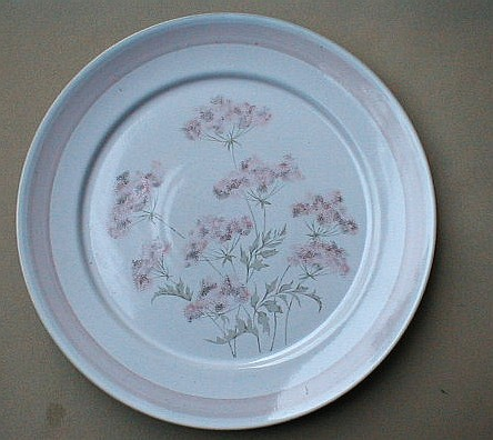 Make sure your browser can show photos and reload this page to see Denby - Langley China Brittany Salad plate