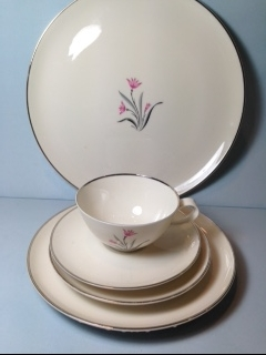 Make sure your browser can show photos and reload this page to see Syracuse China Alpine Place setting 5-piece  Cup,saucer,dinner,salad,B&B plates