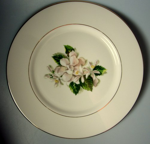 Make sure your browser can show photos and reload this page to see Fine Arts China Remembrance  Dinner plate  10 1/2