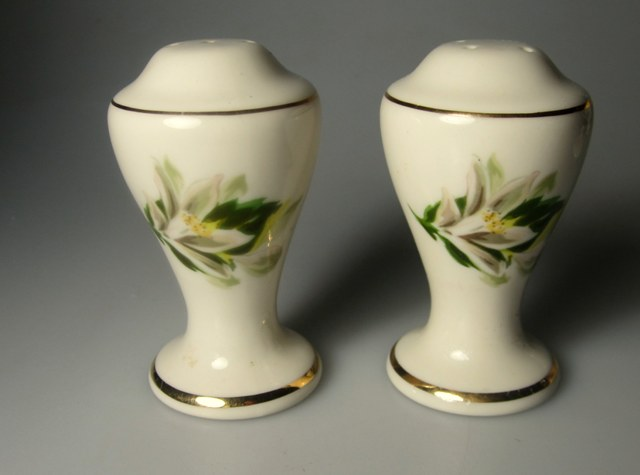 Make sure your browser can show photos and reload this page to see Fine Arts China Remembrance  Salt and Pepper set